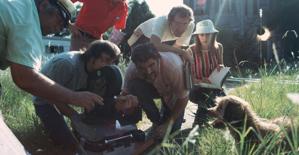 Crew-2-Benji-1973