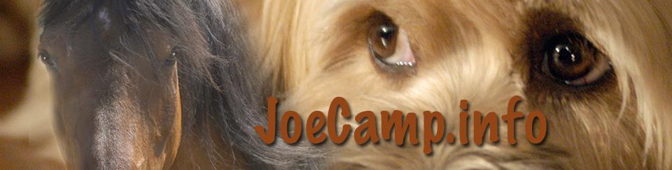 joecampinfo